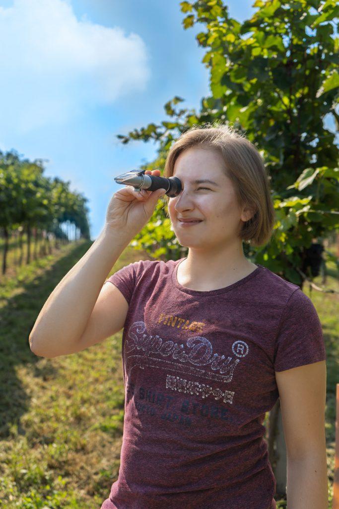 Anna-Carina misst den Zuckergehalt der Trauben mit einem Refraktometer