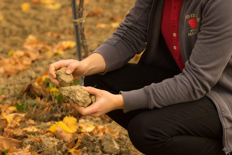 Anna-Carina Mantler hält ein paar Brocken Erde in die Kamera und erklärt die Bodenzusammensetzung